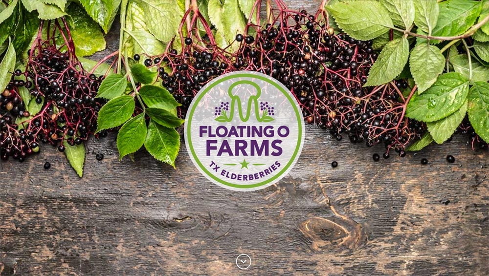 "Floating O Farms | <a href=""http://www.floatingofarms.com&quot target=""_blank"";>www.floatingofarms.com</a>"